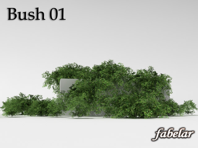 bush_02off.jpg