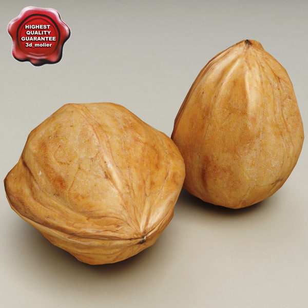 Walnut 3D Models