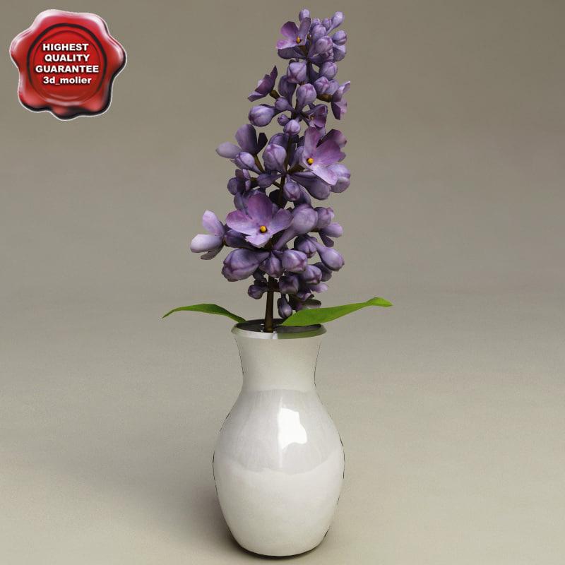 Lilac_Flower_in_Vase_0.jpg