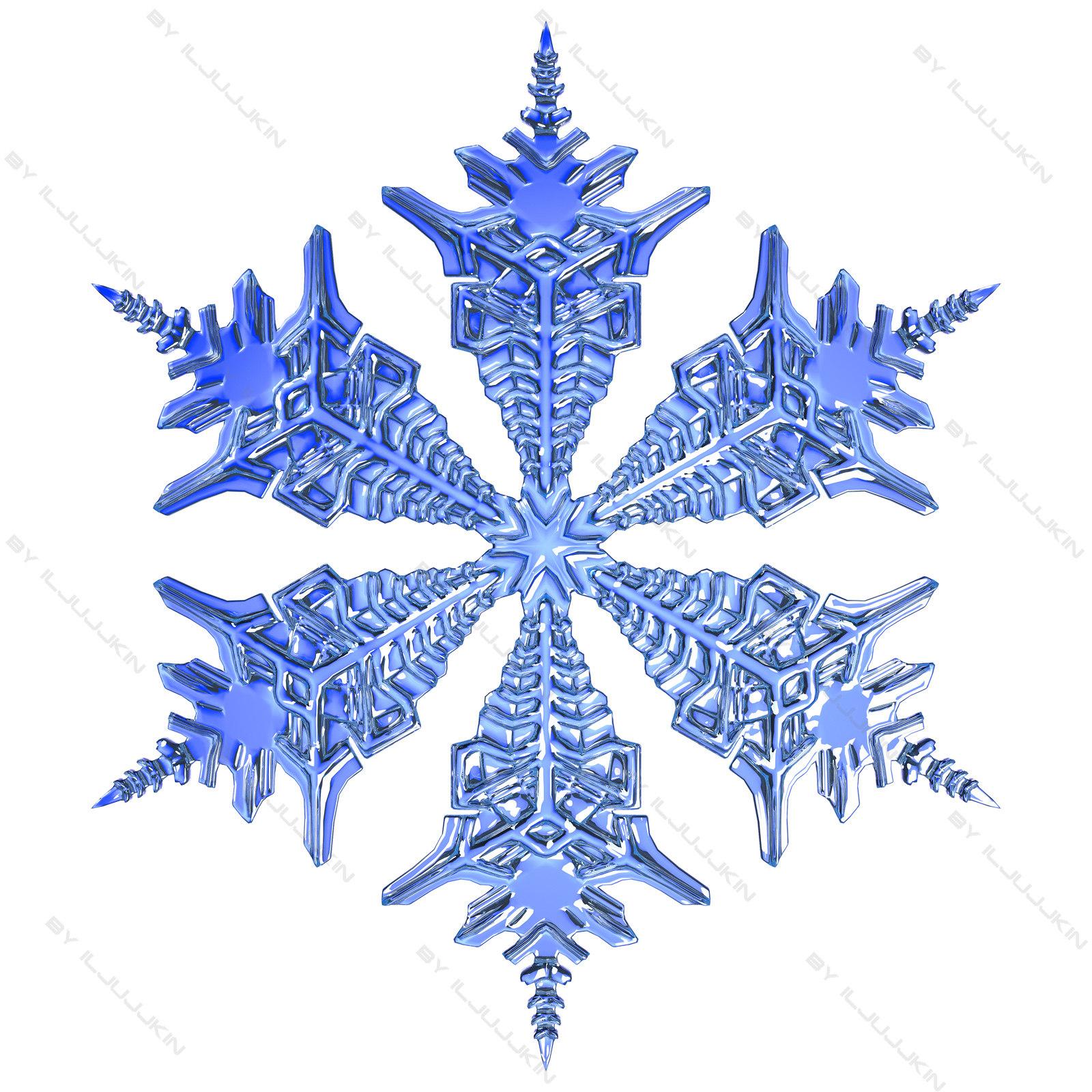 snowflake_1_3.jpg