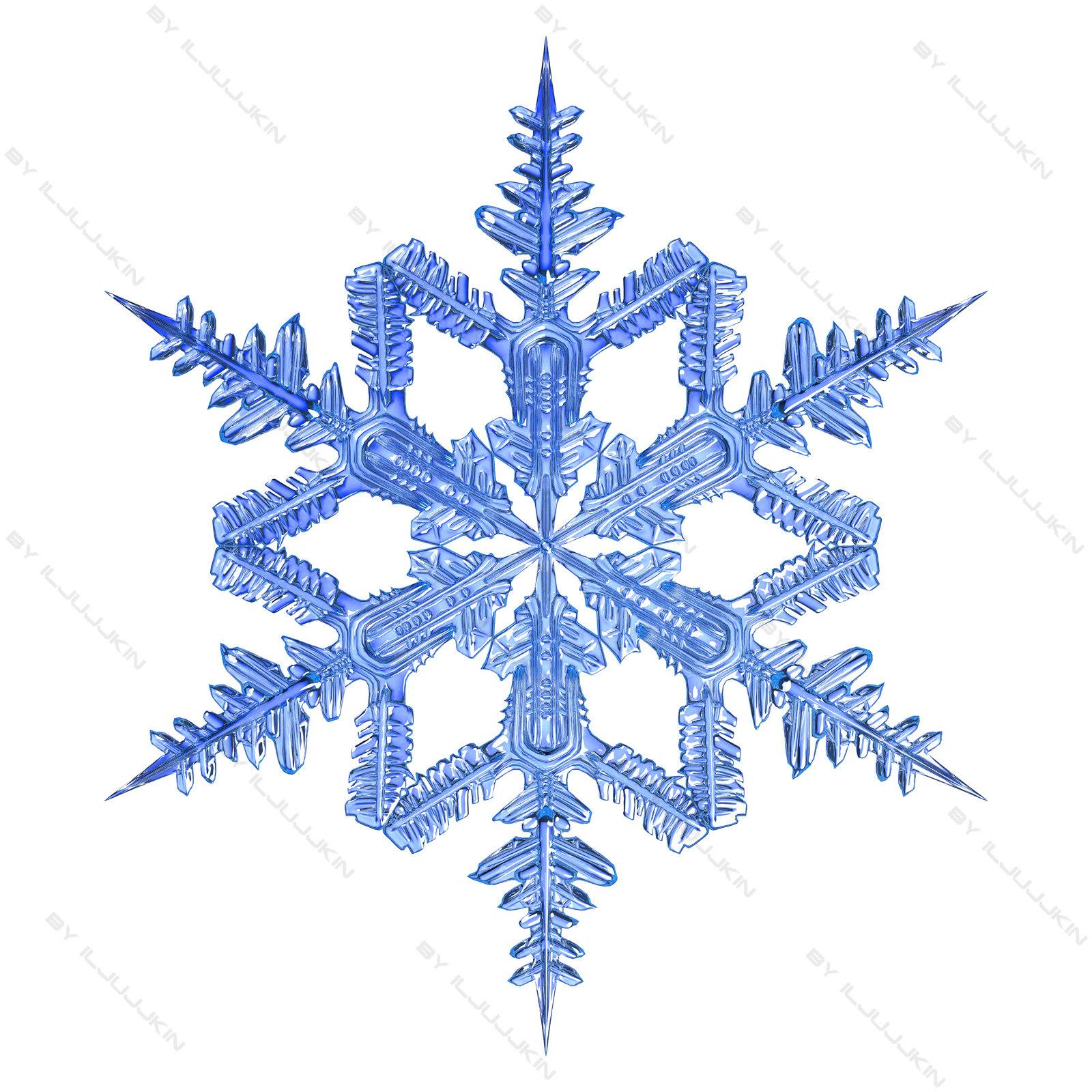 snowflake_2_3.jpg