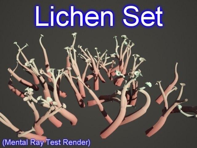 Lichen Set 001