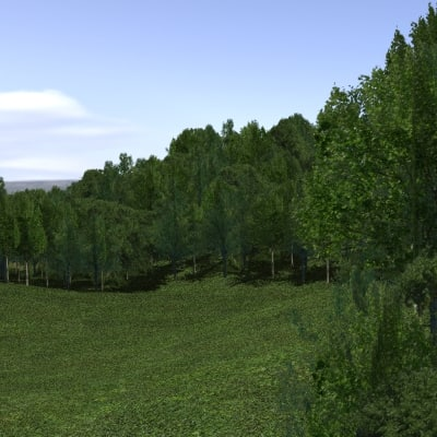 Forest lined grassy terrain 3D Models