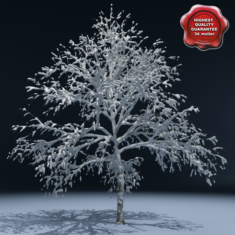 Winter_Tree_V1_00.jpg