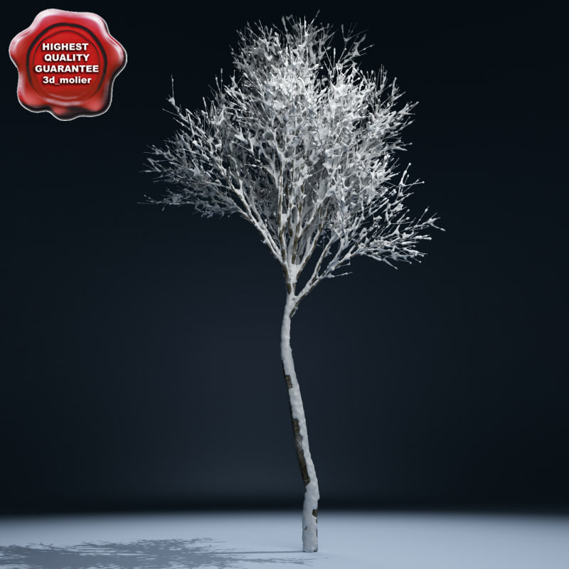 Winter_Tree_V2_00.jpg