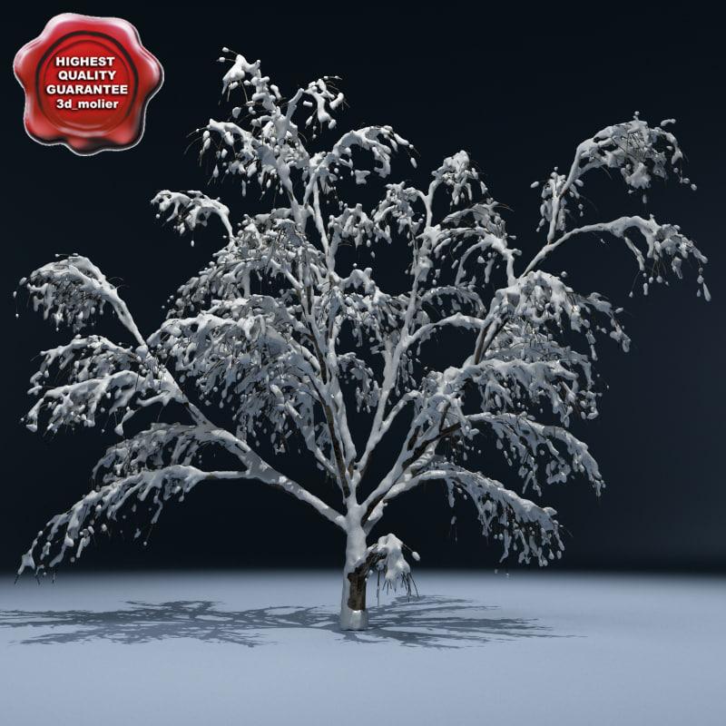 Winter_Tree_V4_00.jpg