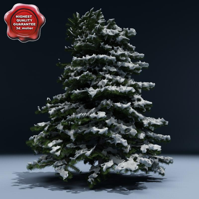 Winter Tree V6