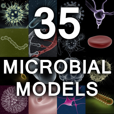 Microbiology Model Collection Set 1 3D Models