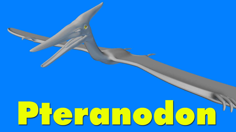 Pteranodon_Pic_1.jpg