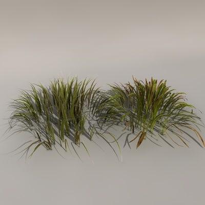 Grass Texture Maps