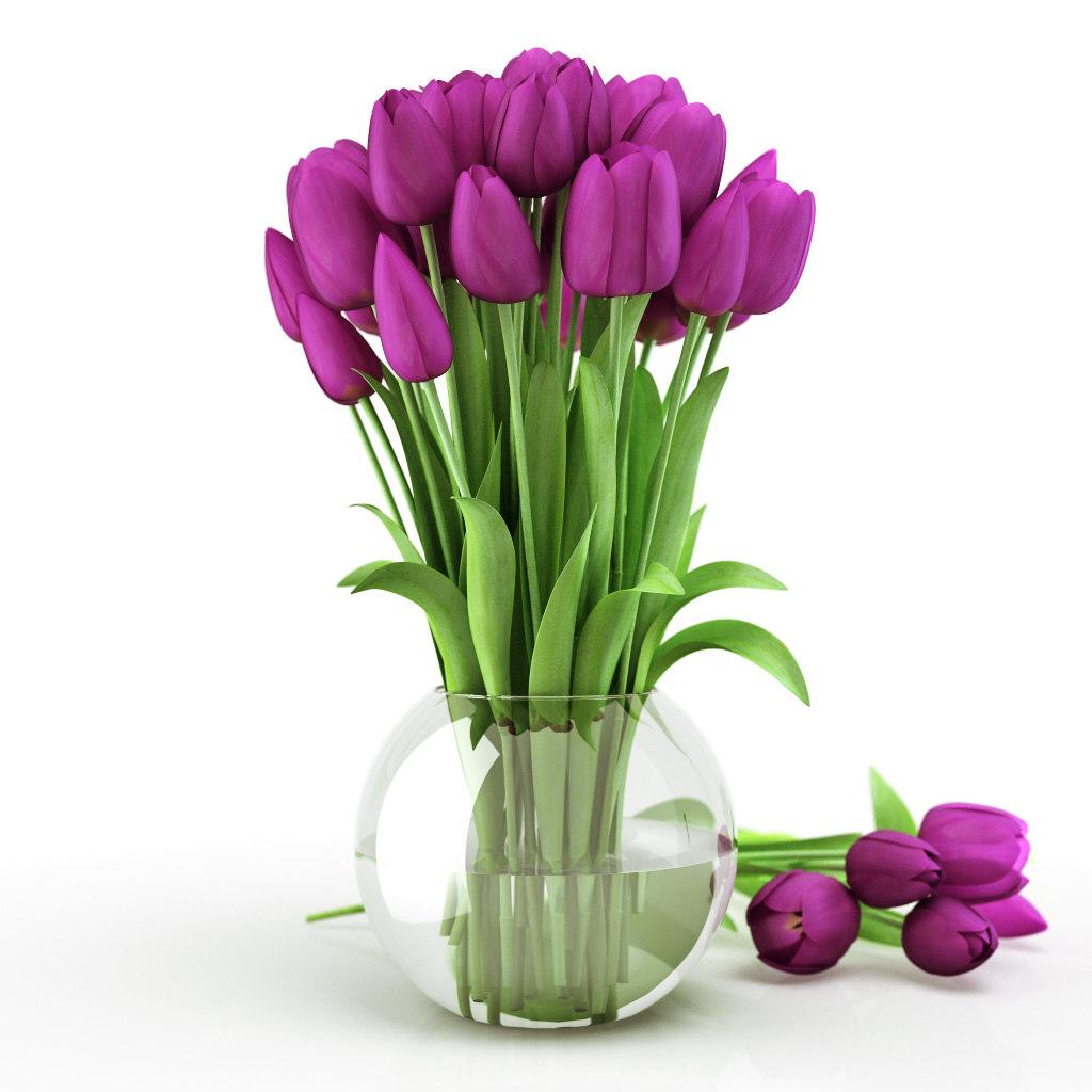 Tulips_vase_violet.jpg