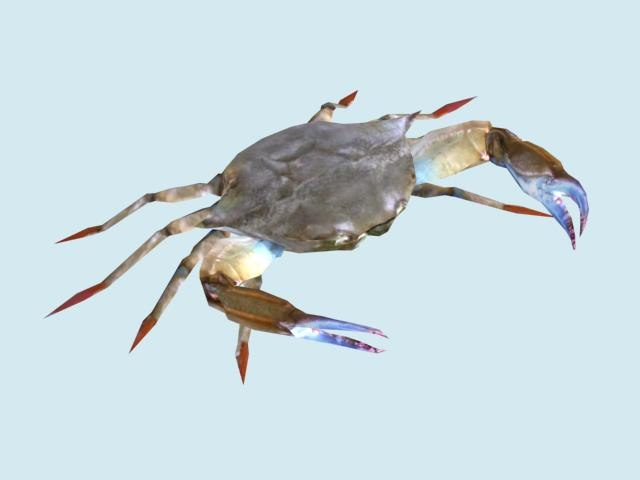 Crab b