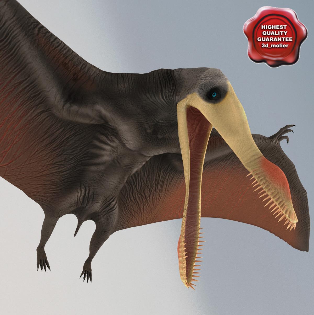 Dinosaur_Pterosaur_Rigged_00.jpg