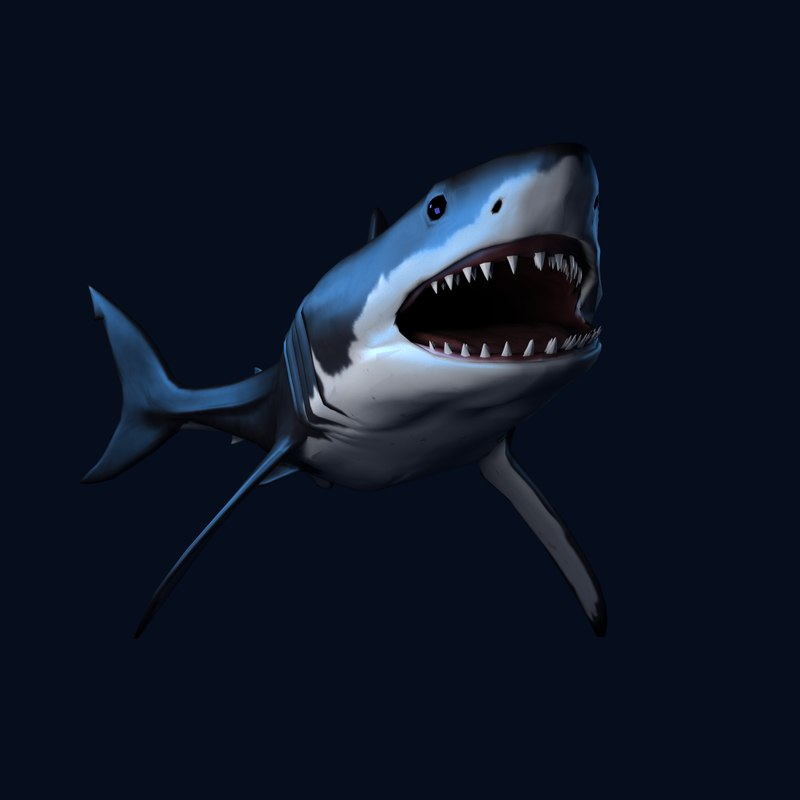 Great White Shark Blender CG OBJ Model for Sale