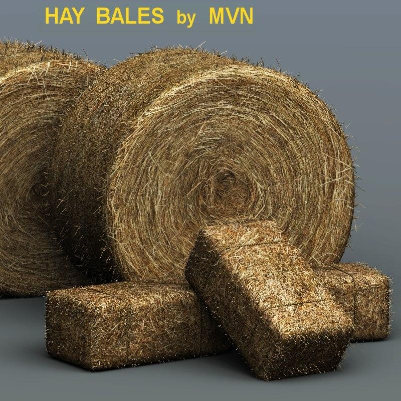 haybales-th1.jpg