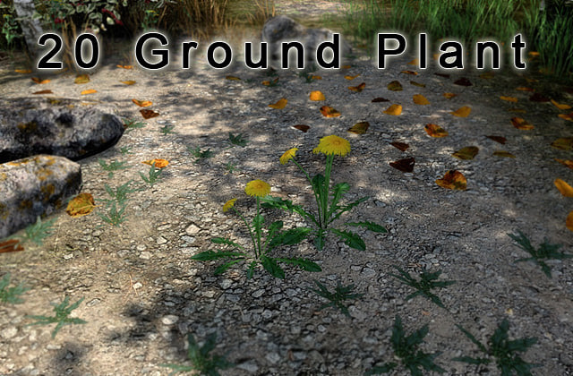 Ground_Plants_v1.jpg