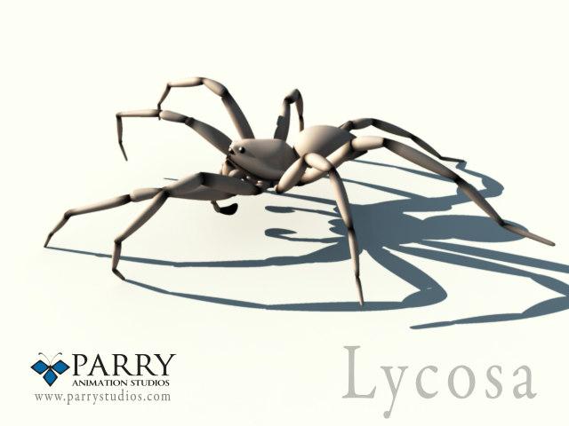 Spider.3.jpg