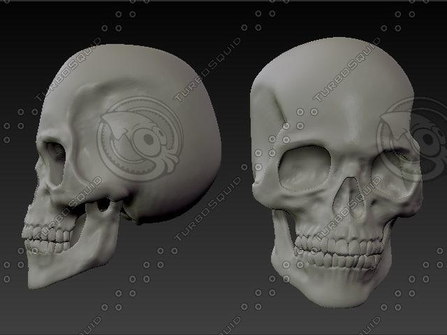 skull2.BMP