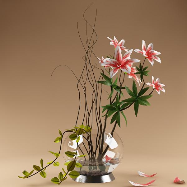 plant_x_02