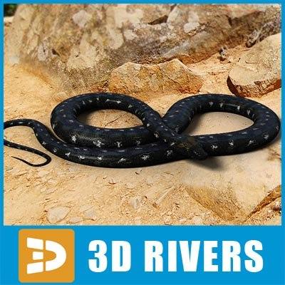 Black python by 3DRivers 3D Models