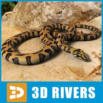 Orange spotted python by 3DRivers 3D Models