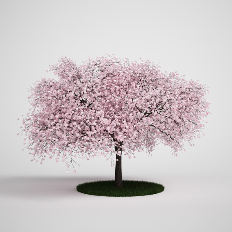 STL Finder | Searching 3D models for tree bonsai White Christmas Tree Decorations 2014