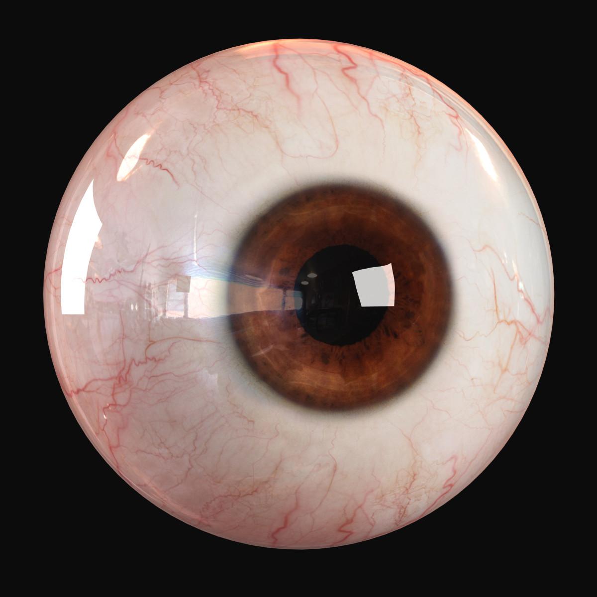 eye_image_01.jpg