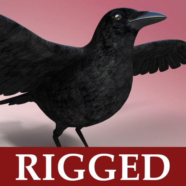 Crow - Rigged 3D Models