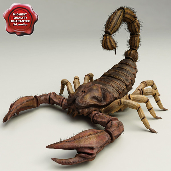 Scorpion V2 3D Models