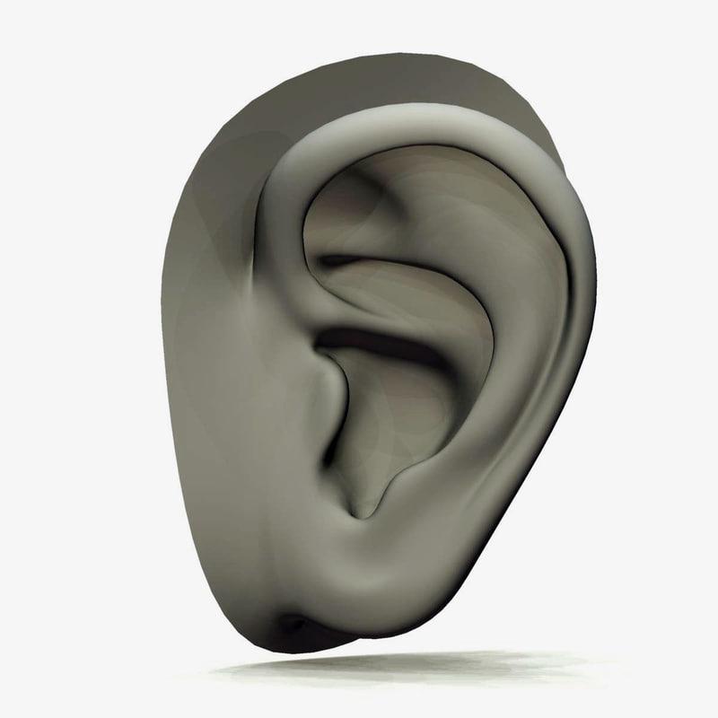 Ear_1.jpg