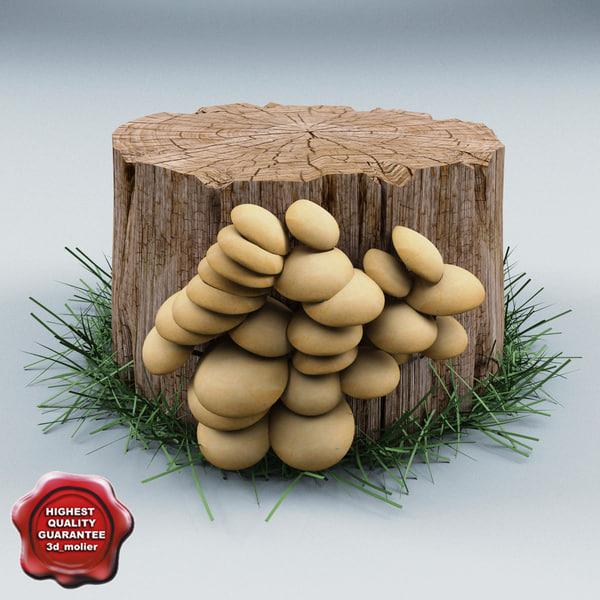 Old Stump V2 3D Models