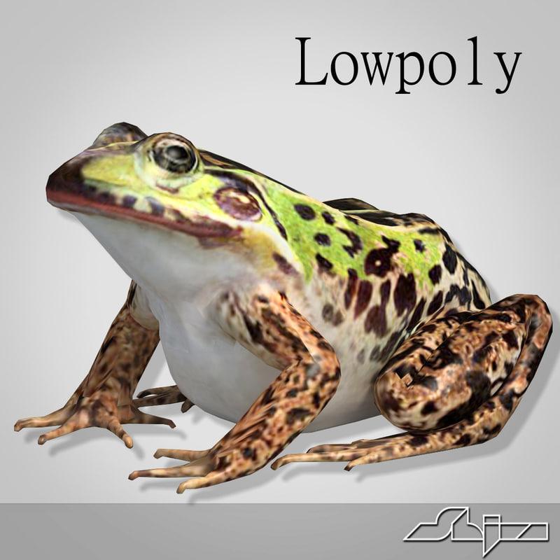 Frog2_render-1.jpg