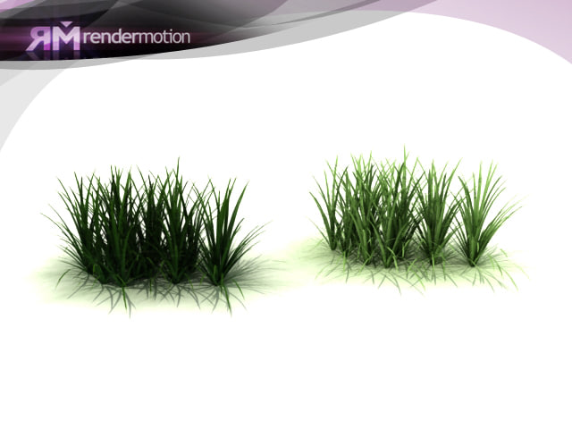 d2 c1 26 lemongrass pasto 3d model