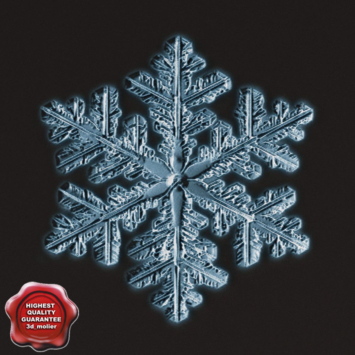 Snowflake_V7_0.jpg