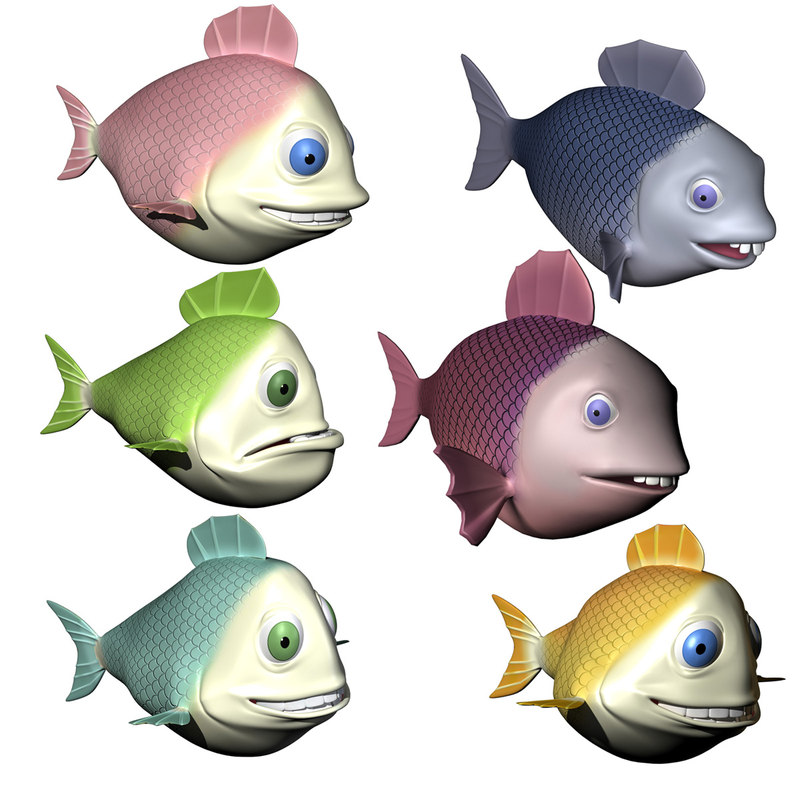 fishCollection.jpg