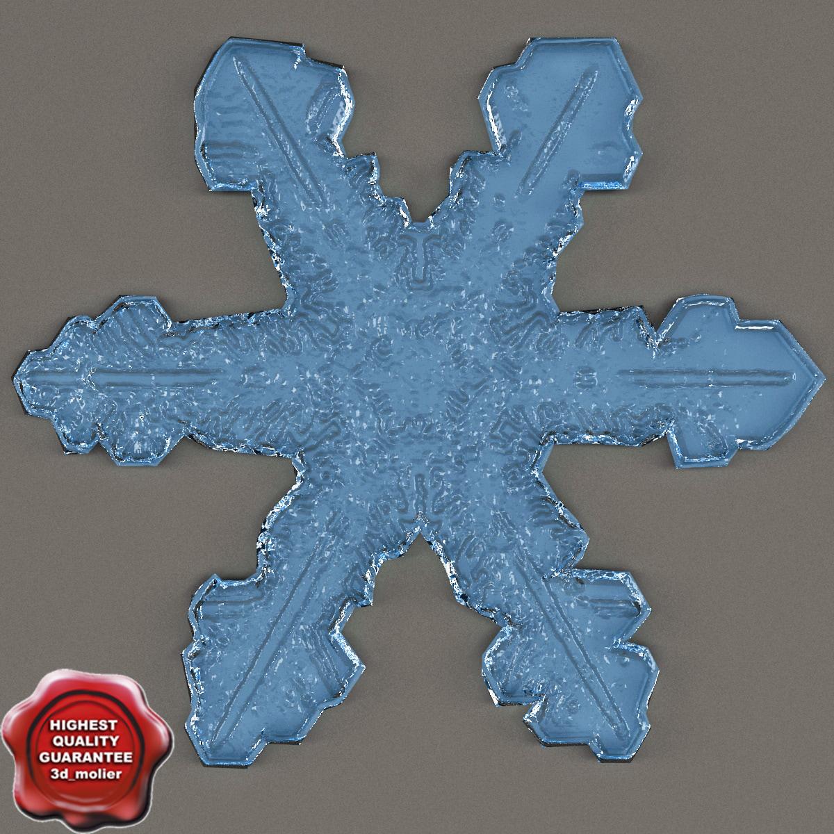 Snowflake_V4_0.jpg
