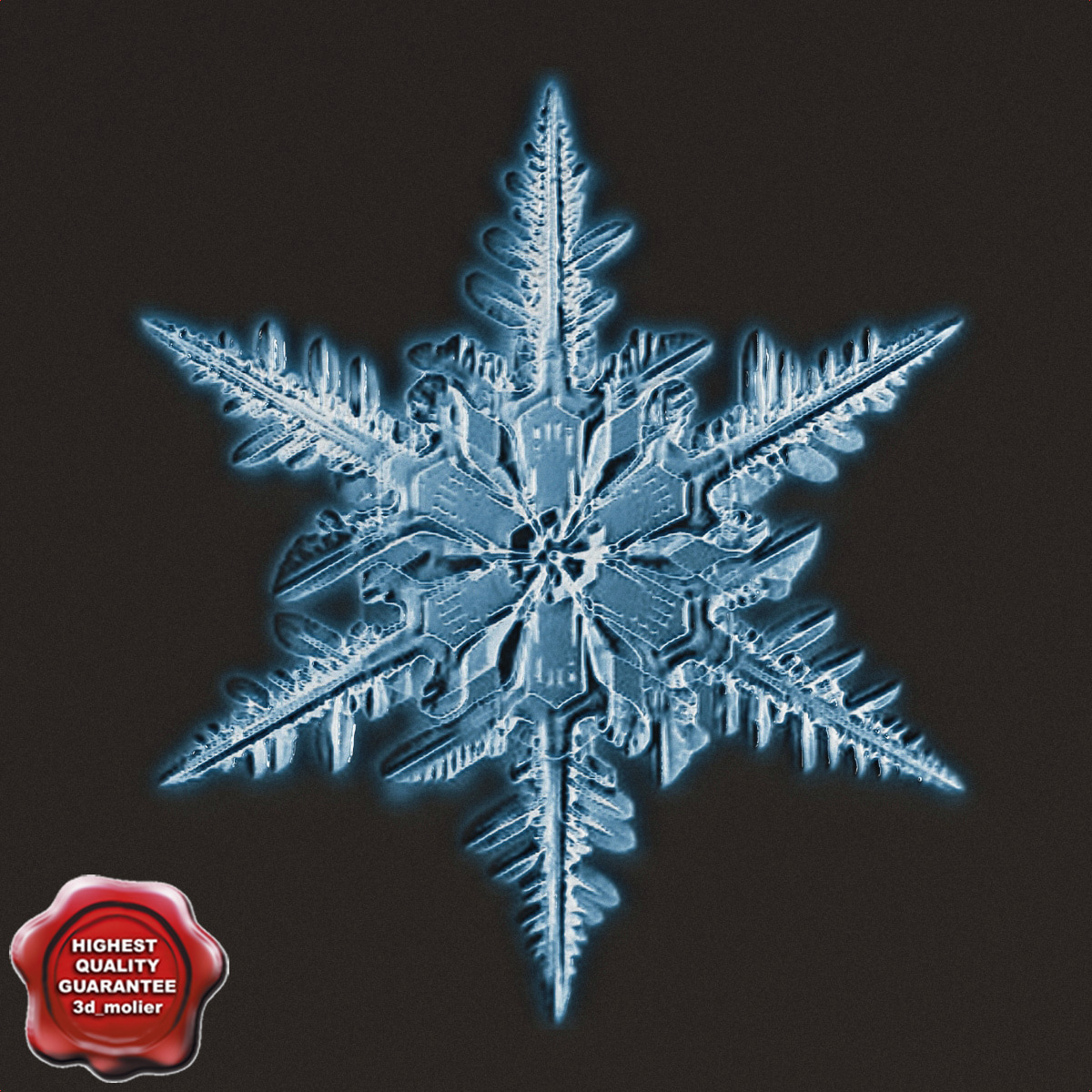 Snowflake_V5_0.jpg