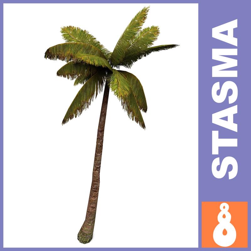 palm3_view_A.jpg