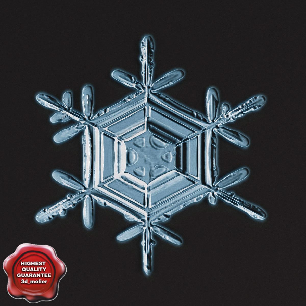 Snowflake_V8_0.jpg