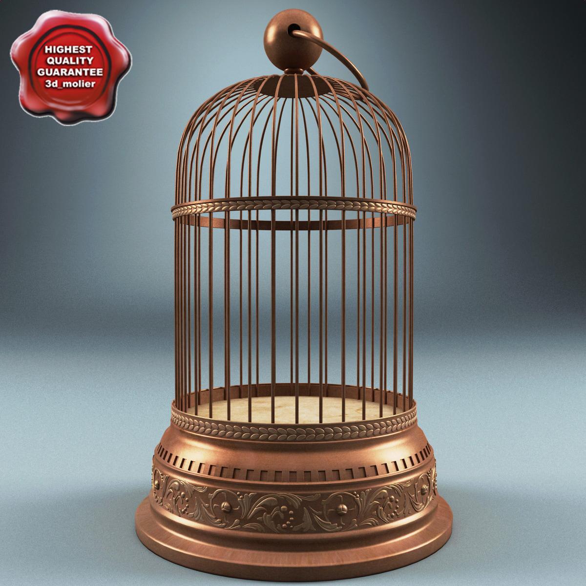 Old_Bird_Cage_00.jpg