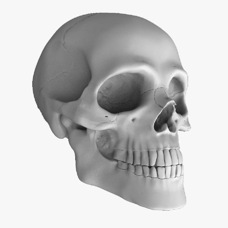 skull_threequarterOG.png