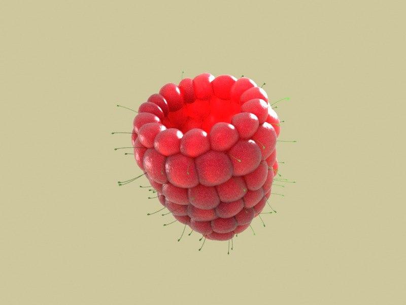 Raspberry_vray4.jpg