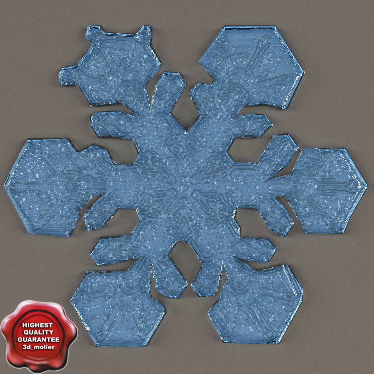 Snowflake_V1_0.jpg
