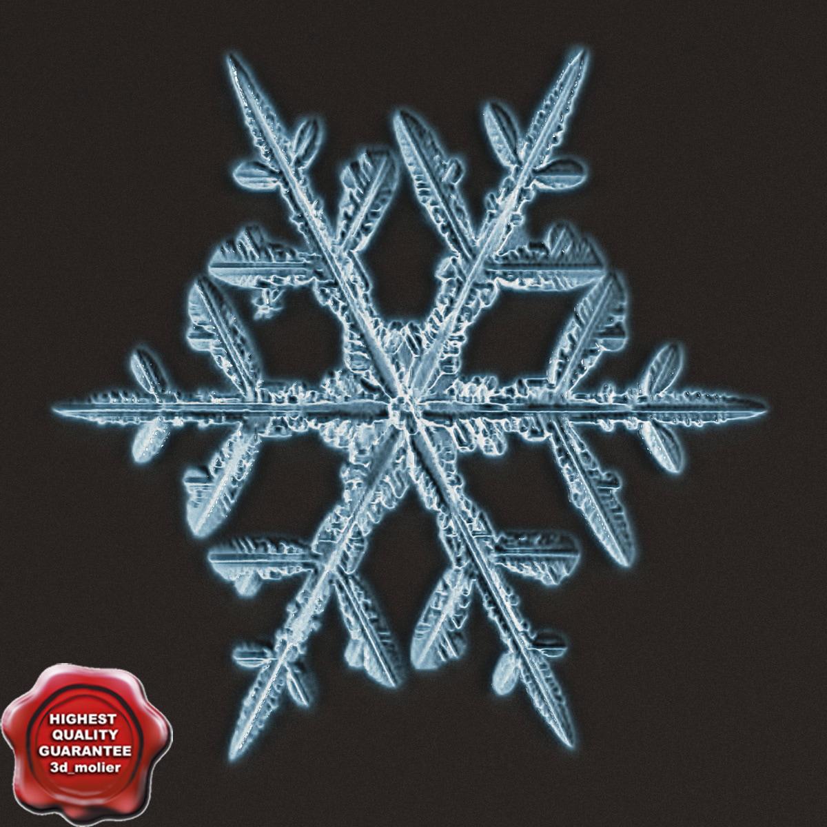 Snowflake_V6_0.jpg