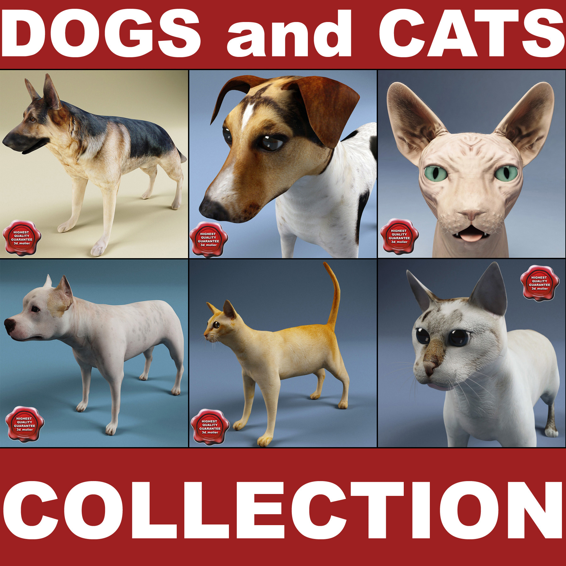Dogs_and_Cats_Collection_00.jpg