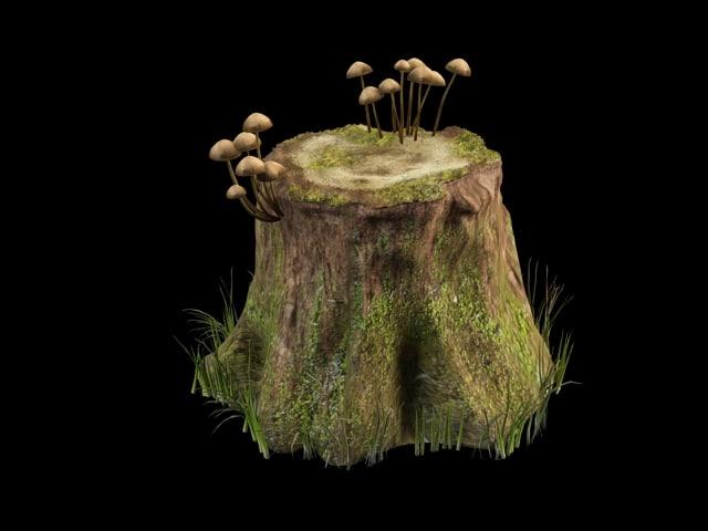 stump_3.jpg