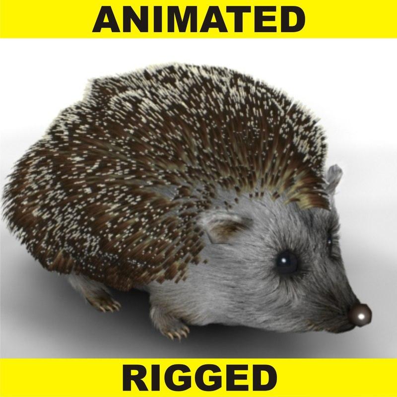 Hedgehog_003.jpg