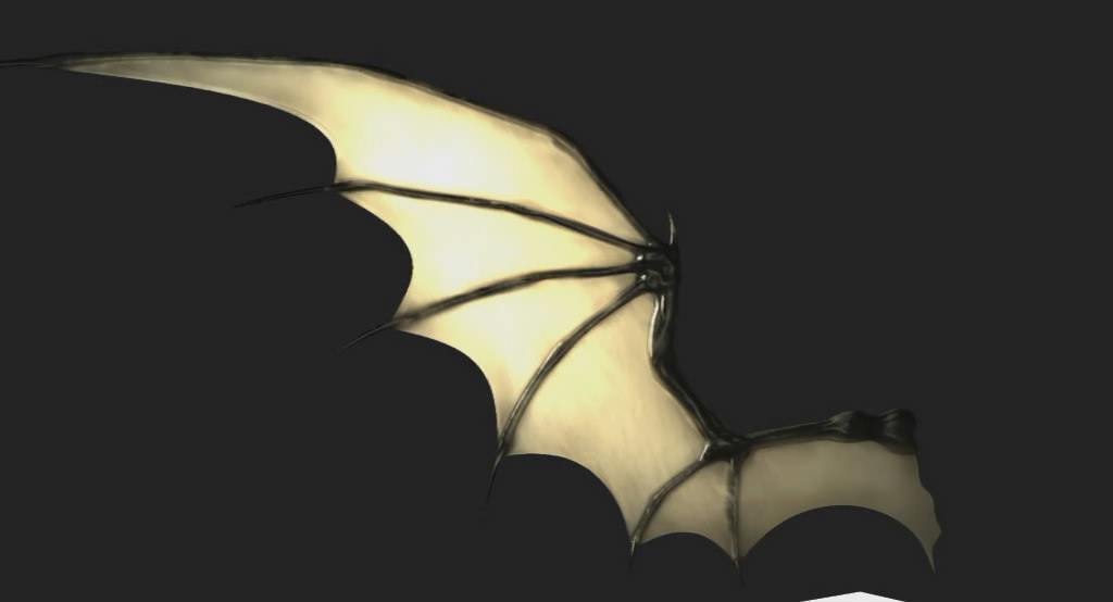 bat wings pictures to pin on pinterest pinsdaddy