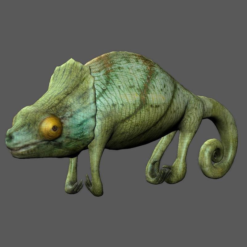 Chameleonlowres1.jpg