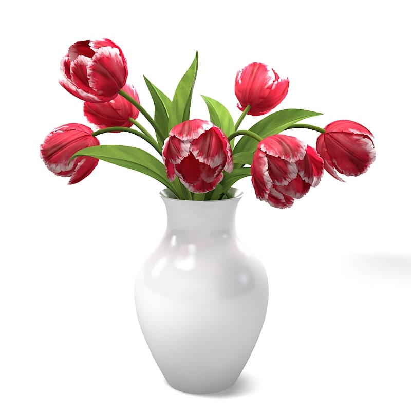 Red Tulips Bouquet In The Vase spring flower home table decor accessory accent decorative.jpg